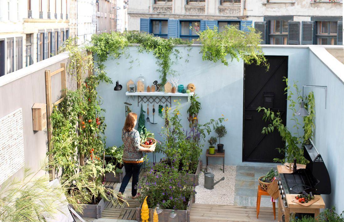 conseils pour un petit jardin malin