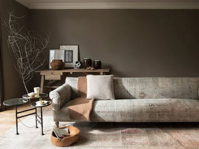 15 exemples pour accorder le taupe a sa