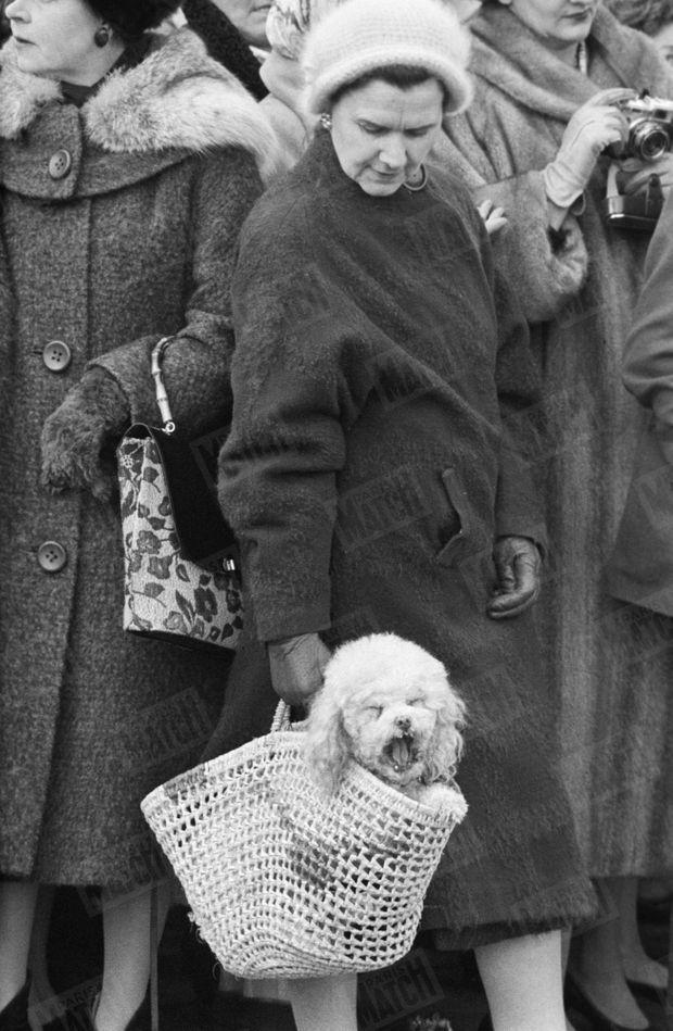 Devant Buckingham Palace, le jour de la naissance du prince Andrew, le 19 février 1960.