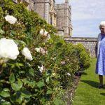 Elizabeth II en deuil : à Windsor, elle a fêté les 100 ans du prince Philip avec poésie…