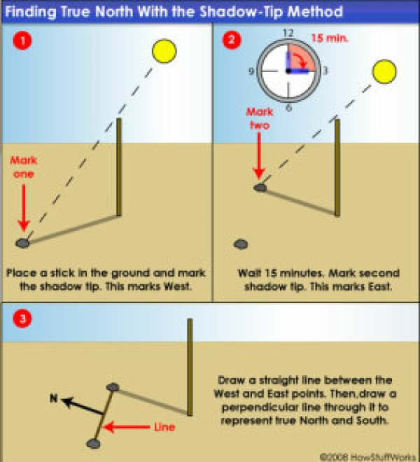 You can use a stick and the shadows from the sun to find approximate true north.