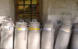 मोदी सरकार में डेयरी सेक्टर ने पकड़ी रफ्तार, 6 साल में 44 फीसदी बढ़ा दूध का उत्पादन- India TV Hindi