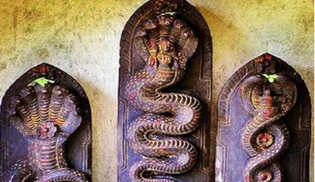 नाग पंचमी 2020:  वास्तु के अनुसार इस दिशा में करें नाग देवता की पूजा, मिलेगा काल सर्प दोष से छुटकार- India TV Hindi