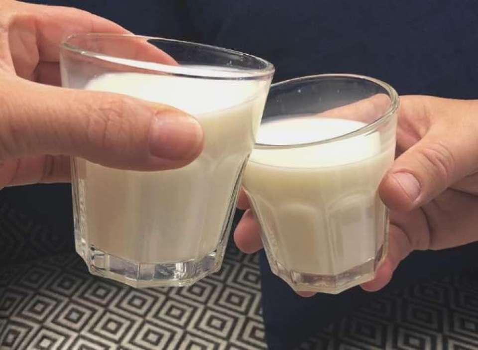 Image result for world milk day 2018