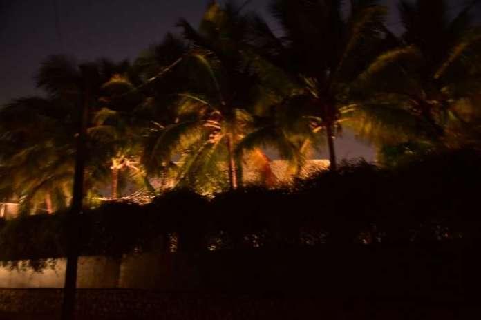 India Tv - Varun & Natasha's wedding venue gets lit up