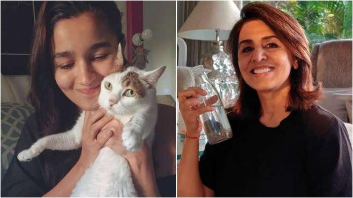Do you know Neetu Kapoor's new friend has an Alia Bhatt connection?