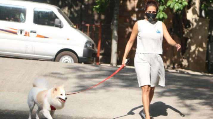 Malaika Arora trolled for stepping out for walking dog Casper amidst the lockdown