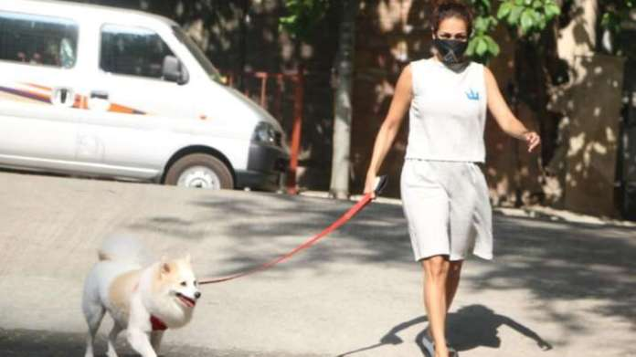 Malaika Arora trolled for stepping out for walking dog Casper amidst the lockdown | Latest News Live | Find the all top headlines, breaking news for free online April 24, 2021