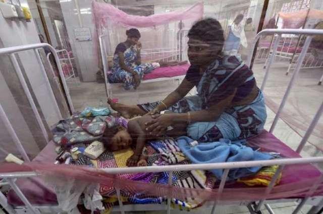डेंगू जैसे वायरल से 12 बच्चों समेत 14 की मौत