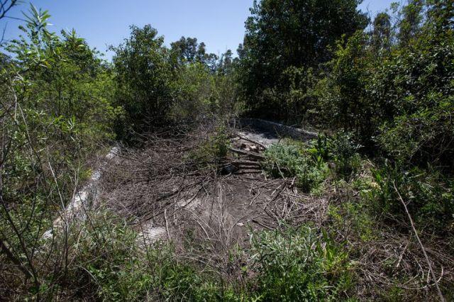 En el viejo balneario todo es ruinas, como si se tratase de los restos de una contienda bélica