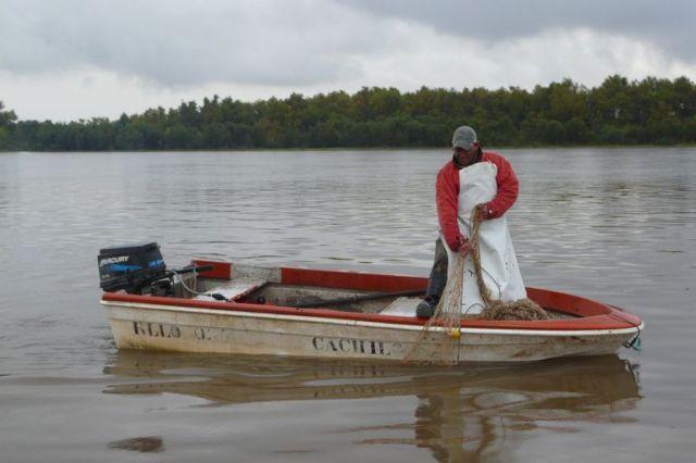 El trabajo de la red de pescadores del delta del Paraná