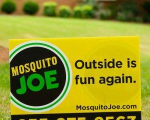 Mosquito Joe tagline