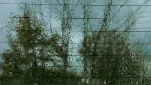 Rain-Painting-still-Rear-Window-Fall-IS1-adj