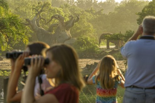 Guests look out over a wildlife-filled savanna on Wild Africa Trek, where adventure comes alive in an exciting experience at DisneyÕs Animal Kingdom. The add-on offering invites intrepid explorers to up-close encounters with the parkÕs wildlife. As part of their expert-led adventure, guests take safari vehicles to a serene overlook where they can savor Africa-inspired food and beverage while observing giraffes, elephants, gazelle and more. DisneyÕs Animal Kingdom is part of Walt Disney World Resort in Lake Buena Vista, Fla. (Kent Phillips, Photographer)