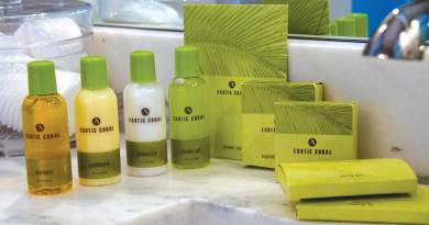 Essential Amenities: Soaps, Shampoos, Conditioners, Body Lotions and Bath Gels for your guests.