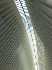 World Trade Center Oculus
