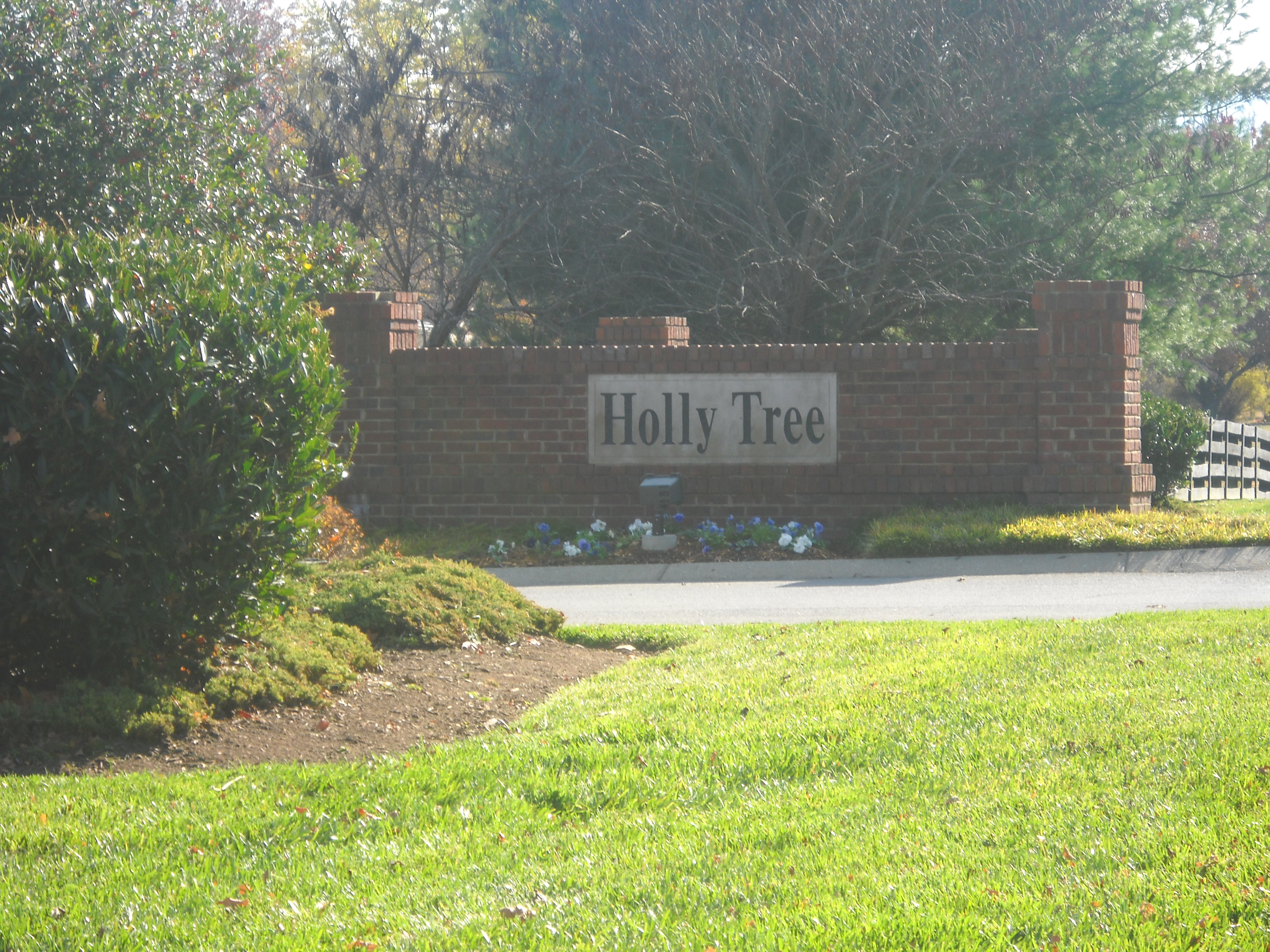 Holly Tree Subdivision