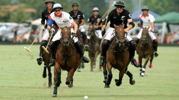 Professional polo teams from four countries including New Zealand are competing at Clevedon.