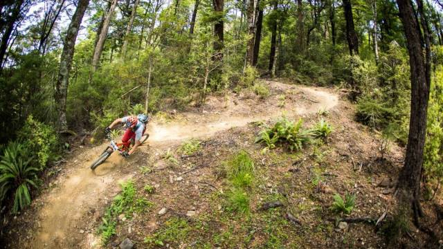 Wairoa Gorge Mountain Bike Park lease extended to 2019 ...