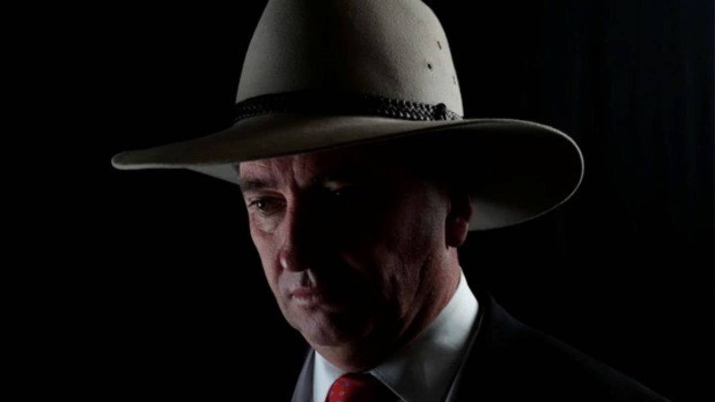 I Wanted To Go Barnaby Joyce The Half Crazed Cattle