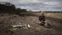 Harry Taylor plays with the bones of dead livestock on his family farm.