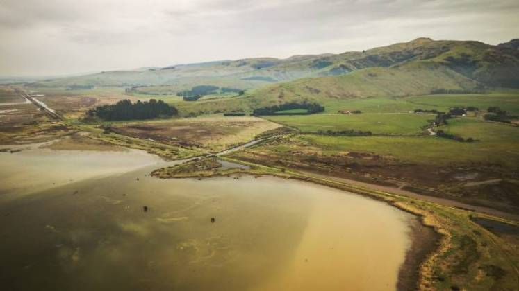 Te Waihora/Lake Ellesmere in Canterbury is one of the most polluted waterways in the country.