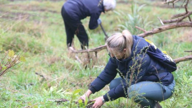 Brenda Bell was among the volunteers from the nearby Fencourt community to lend at hand at Buxton Farm.