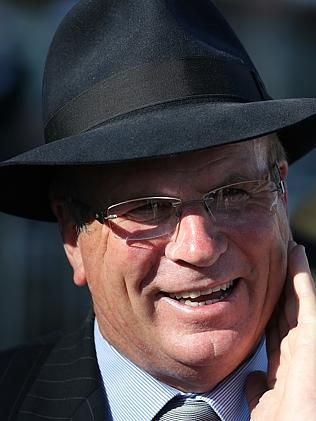 Robert Smerdon has Group 1 plans for Politeness. Picture: George Salpigtidis