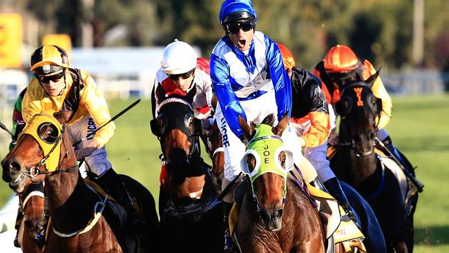 Looks a good thing: Landlocked, ridden by Glen Boss, wins the Wagga Gold Cup over 2000m t