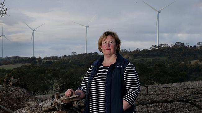 Closer look: Mary Morris, at the Waterloo wind farm north of Adelaide, conducted one of t