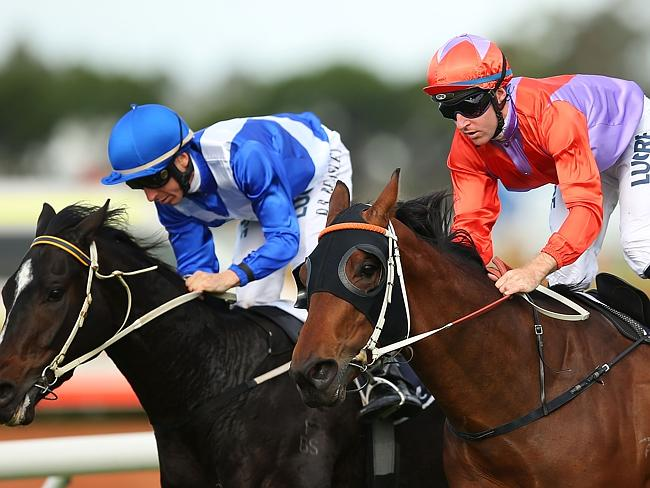Lockroy (right) just pips Well Hardley Ever at Rosehill Gardens on June 13. Picture: Gett