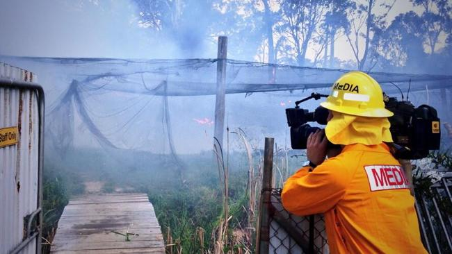 An fish farm is destroyed by a new bushfire at South Windsor.