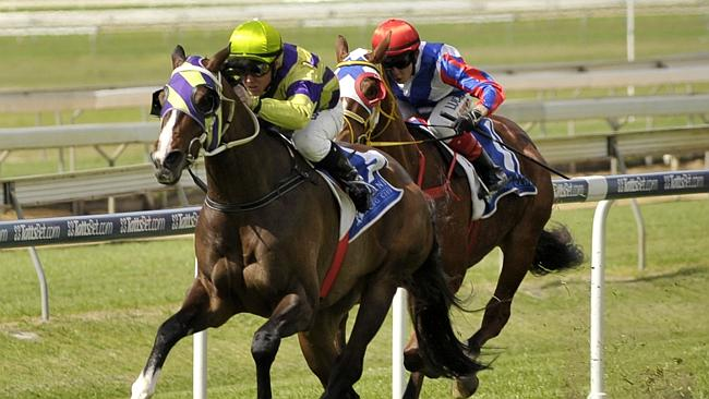 Trainer Bruce Hill has a southern trip planned for Teronado after his win at Doomben on S