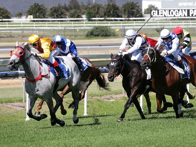The Kelly Schweida-trained Bingo Rose and Luke Tarrant combine to win on Saturday. Pictur