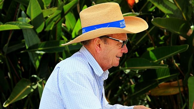Gerry Harvey at this year's Magic Millions yearling sale.