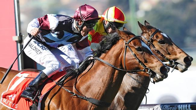 Angelic Light edged out Lankan Rupee to win the McEwen Stakes in the spring.
