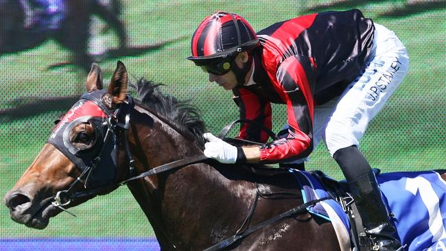 Worthy Cause wins at the Gold Coast. Pictures: Grant Peters/Trackside Photography