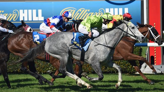 "Ungrateful Ellen (No. 2) did an ""amazing job"" to run third in the SA Classic, according t"