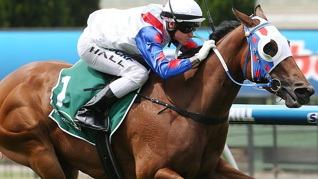 UBET has barely written a ticket for Lumosty following her luckless 10th in the Stradbrok