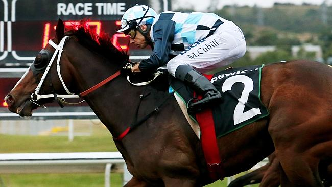 Real Surreal has been backed at long odds in the Tatt's Tiara. Picture: Tara Croser