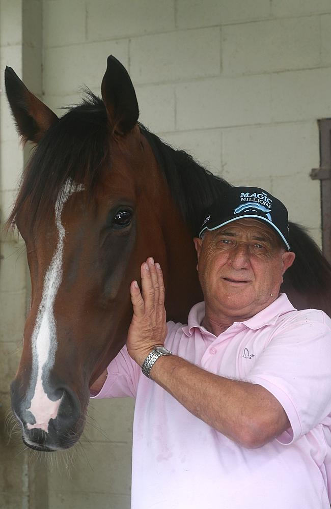 Mario Caltabiano with Budget Bender at his Forest Lodge racing stables on the Gold Coast.