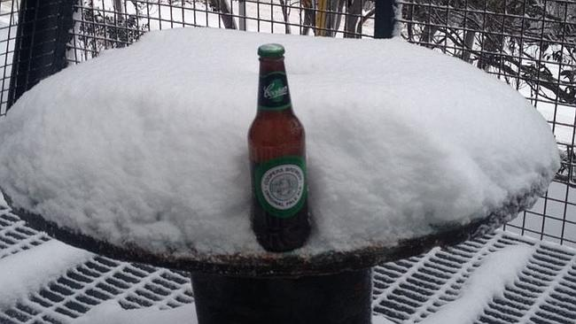 Mmmm... frozen beer.
