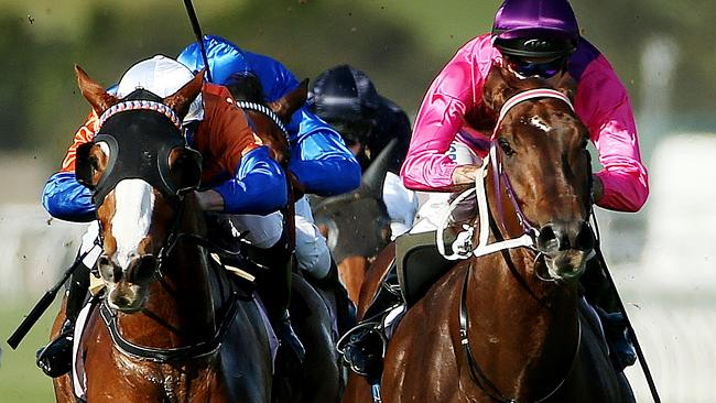 Rich Enuff (right) holds off Looks Like The Cat to win the Danehill Stakes last spring. P