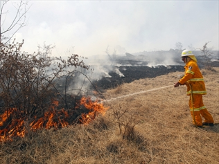 A firefighter tries to contain a grass fire in Talmo