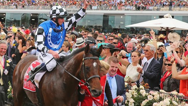 A large crowd watches Protectionist and jockey Ryan Moore win last year's Melbourne Cup.