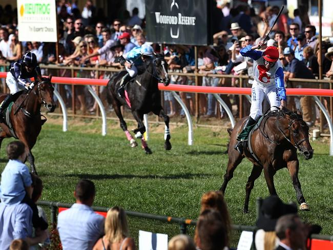 One-way traffic: Thubiaan thumps his rivals at the famous Oakbank Easter carnival. Pictur