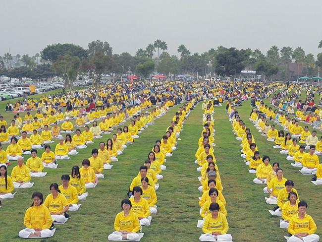 Most of the victims are thought to be members of the banned Falun Gong movement.