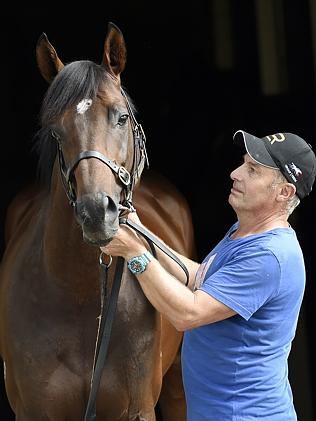 Protectionist with strapper Bob Bowe in Newcastle / Picture: Sue Graham