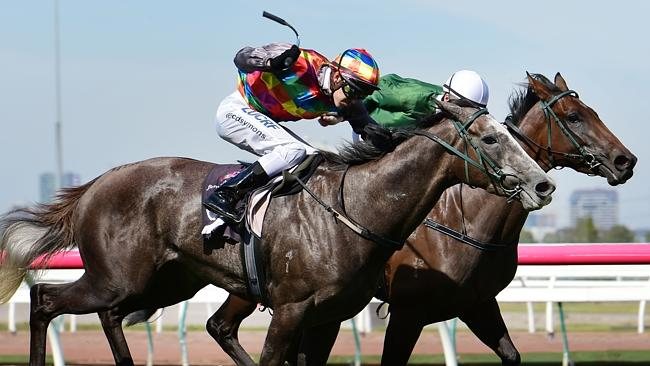 Kansas Sunflower charges down outside to win at Flemington.