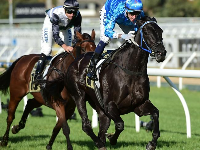Nicholas Hall combines with Fontein Ruby to win the Thoroughbred Breeders Victoria VOBIS